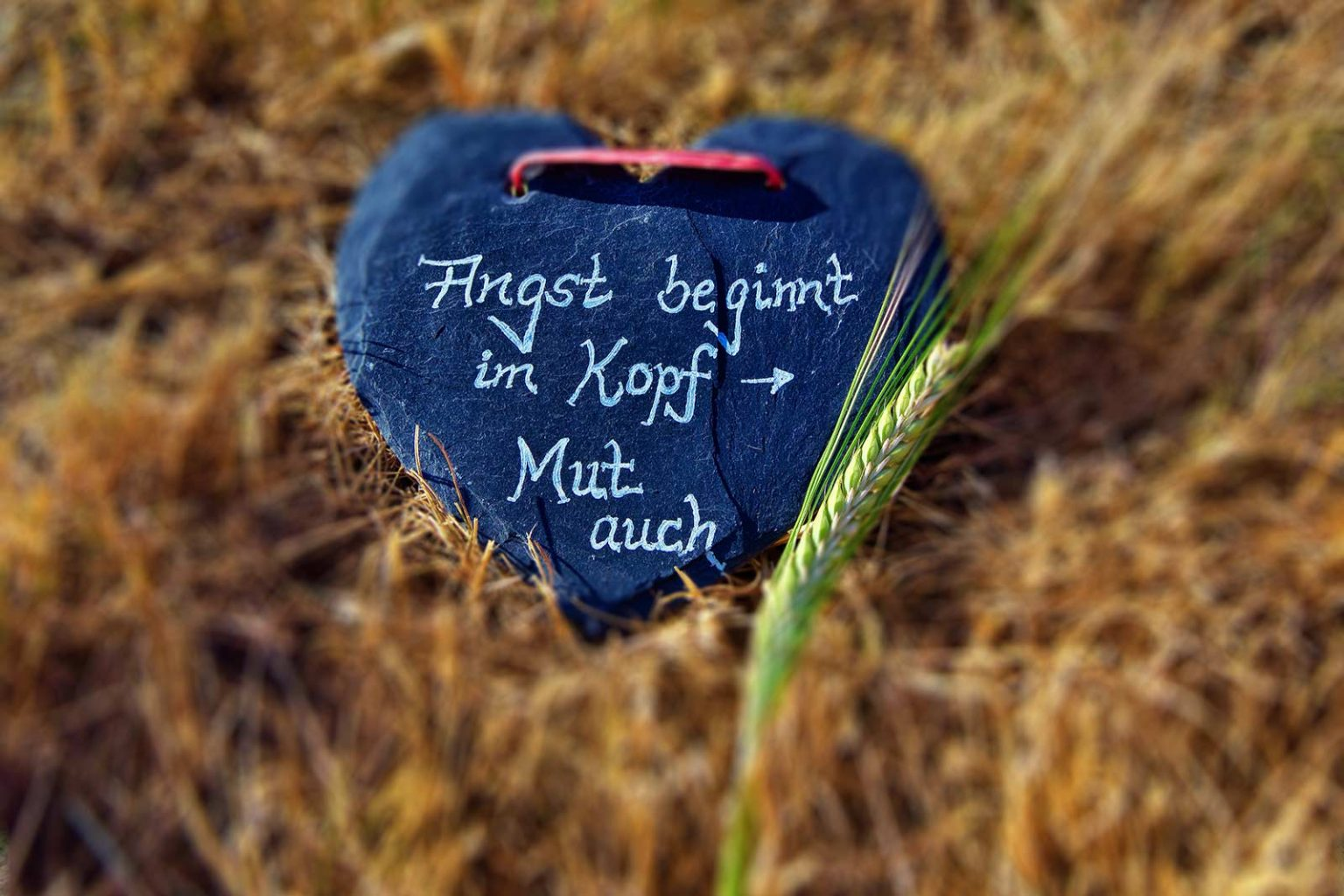 Herz mit dem Zitat: Angst beginnt im Kopf, Mut auch