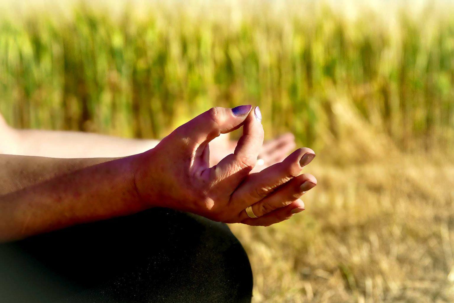 Seelenstärke Meditation mit Chin Mudra auf Wiese
