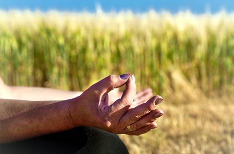 1. Phase im ZENbo Balance - Silence